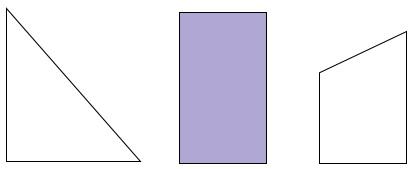Треугольник и четырёхугольник